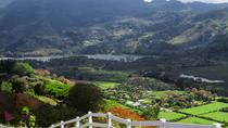 Irazu volcano and gorgeous Orosi Valley, San Jose, Private Sightseeing Tours