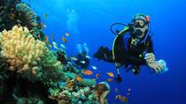 Two Tank Scuba Dive in St Thomas, St Thomas, Scuba Diving