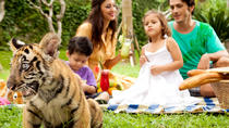 Bali Zoo with Relaxation Time at Halo Bali Spa, Bali, Zoo Tickets & Passes