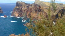 South East Tour Sunday Flea Market from Funchal, Funchal, Full-day Tours