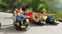Deluxe Tauranga Family Shore Excursion: Rotorua Geothermal Geyser Tour and Skyline with Luge Rides...