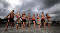 Rotorua Shore Excursion With Living Maori Village, Geysers, and Redwood Forest, Tauranga, Ports of ...