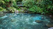Shore Excursion: Geothermal Geysers and Rainbow Springs Combo Including Lunch, Tauranga, Ports of...