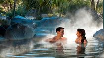 Tauranga Shore Excursion: Rotorua Geothermal Geyser Tour and Polynesian Spa Combo Including Lunch,...