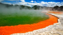 Wai-O-Tapu and Hobbiton Movie Set Tour including Lady Knox Geyser, Day Tour From Rotorua, Rotorua, ...