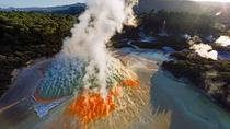 Wai-O-Tapu : Lady Knox Geyser : Champagne Lake And Rainbow Springs : Small Group Tour Rotorua, ...