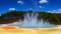 Wai-O-Tapu : Lady Knox Geyser : Champagne Lake and The Living Maori Village Small Group Tour, ...