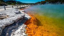 Wai-O-Tapu : Lady Knox Geyser : Champagne Lake : Polynesian Spa Resort: Combo Day Tour Rotorua,...