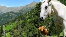 Self-Guided 5-Day Family Tour in the Pyrenees, Barcelona, Multi-day Tours