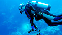 One Day PADI Scuba Diving Adventure from San Jose, Puntarenas, Scuba Diving