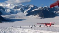 Denali Experience Flightseeing Tour, Denali National Park, Air Tours
