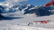 Denali Flyer Tour, Denali National Park, Air Tours