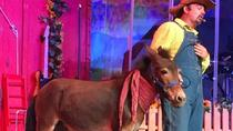 Comedy Barn in Pigeon Forge, Pigeon Forge, Attraction Tickets