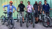 Rainey Street Pub Crawl and Bike Tour, Austin, Bar, Club & Pub Tours