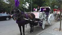 Horse Drawn Carriage Ride in Central Park, New York City, Literary, Art & Music Tours