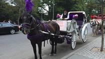 Kutschenfahrt im Central Park, New York City, Horse Carriage Rides