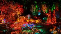 Christmas Lights Tour and Butchart Gardens, ビクトリア