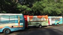 Party Bus to Stargazing, Big Island of Hawaii, Cultural Tours