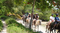 Punta Cana Horseback Riding Adventure, Punta Cana, Horseback Riding