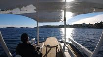 Private Tour: French Riviera Solar Boat Cruise with Skipper from Beaulieu sur Mer, Nice, Private ...