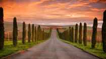 Full-Day Napa Valley Wineries Tour with Luxury Transportation, Napa & Sonoma, Wine Tasting & ...