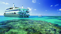 4-Day Great Barrier Reef Multi-Day Cruise to Pelorus Island from Cairns, Cairns & the Tropical...
