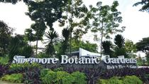 Half-Day Singapore Botanic Gardens Tour, Singapore, Museum Tickets & Passes