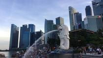 Singapore Half Day Private Tour, Singapore, Walking Tours