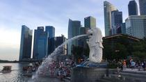 Singapore Private Tour with Local, Singapore, Hop-on Hop-off Tours
