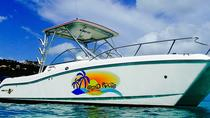 Full Day Private Boat Charter from St John, St John