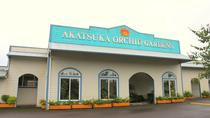 Orchid Gardens Tour and Tasting, Big Island of Hawaii, Day Trips