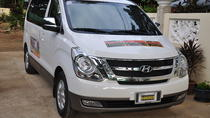 private arrival transfer from airport to hotel, Puerto Princesa, Airport & Ground Transfers