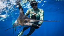 Spearfishing, Auckland, Other Water Sports