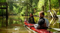 Half-Day Kayak Trip on the Parana River Delta, Buenos Aires