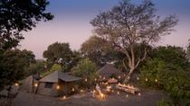 7-Day Mobile Camping Safari from Kasane, Kasane, Multi-day Tours