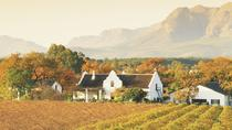 Half-Day Cape Winelands and Wine Tasting Tour from Cape Town, Cape Town, Half-day Tours