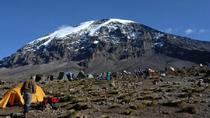 7-Night Kilimanjaro Climb via Marangu Route, Arusha, Multi-day Tours