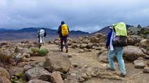 8-Day Kilimanjaro Climb Via Machame Route, Kilimanjaro, Multi-day Tours