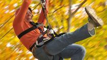 Small Group Northern Berkshires Zip Line Canopy Tour , Massachusetts, Ziplines