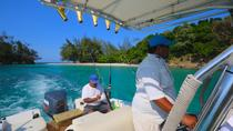Private fishing charters in Roatan, Roatan, Private Sightseeing Tours
