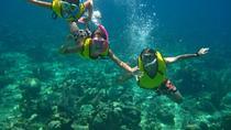 Snorkel trip in Utila, La Ceiba, Snorkeling