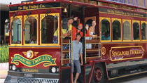 Classic Trolley City Tour (3 hrs) - Little India - Kampong Glam - Marina Bay, Singapore, City Tours