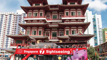 HiPPO Singapore City Tour (3 hrs) - Chinatown-Merlion-Marina Bay, Singapore, City Tours