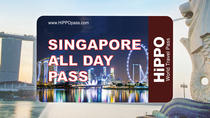 The Singapore All Day Pass 2 or 3-days including Universal Studios, Singapore, Universal Theme Parks