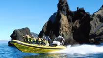 2 hour Round Trip in Vestmannaeyjar on a RIB Boat, South Iceland, Day Cruises