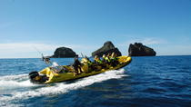 Tour in battello turistico di 1 ora per piccoli gruppi a Vestmannaeyjar, South Iceland, Day Cruises