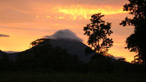 Private Arenal Volcano Hike and Tabacon Thermal Hot Springs with Dinner, La Fortuna, Day Trips