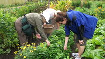 Private tour to Don Juan Educative and Organic Farm, Buenos Aires, Private Sightseeing Tours