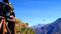 Colca Canyon Full day tour, All Inclusive, Arequipa, Full-day Tours