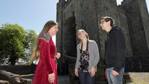 Admission Ticket to Bunratty Castle and Folk Park, Limerick, Attraction Tickets